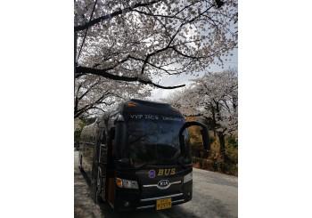 25인용 리무진버스
